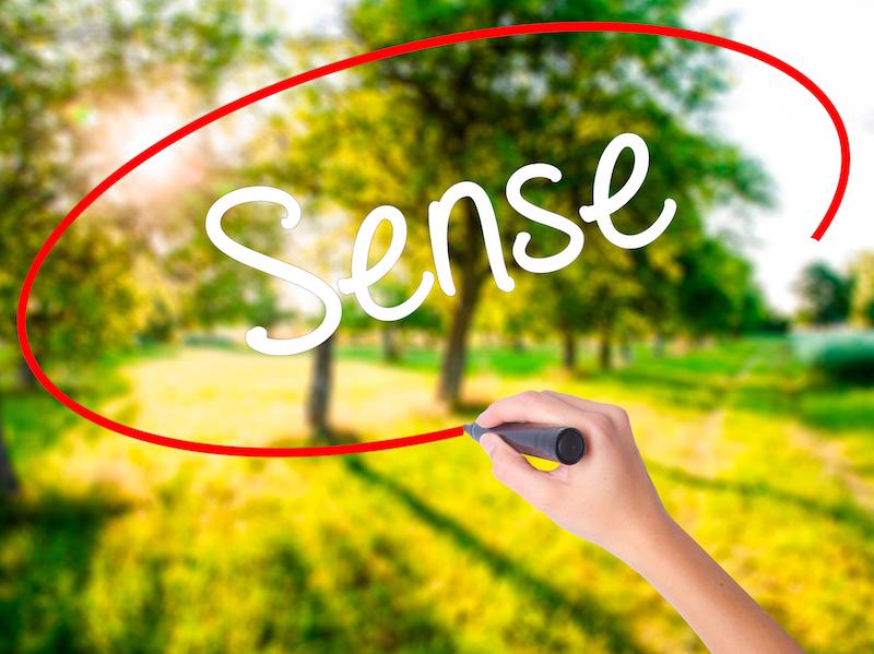 Sense In a Deeper Way