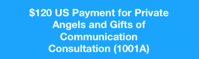 Angels and Gifts of Communication Consultation (1001)